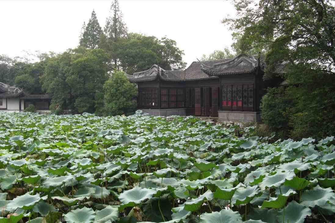 """中国历史文化名镇,被称为""""文化之邦""""和""""诗书之乡"""",游人如织"""