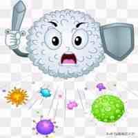 白细胞减少的危害!(白细胞偏低的原因及危害)