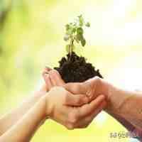 退休后干点什么好(退休后做什么事情,有助于延长寿命?)